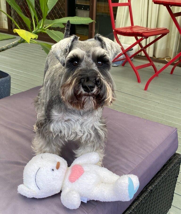 Winnie with Toy
