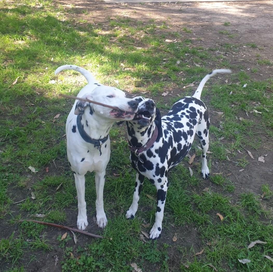 Demi&Zeus